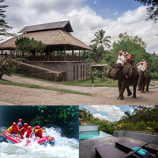 Ubud & Elephant Package